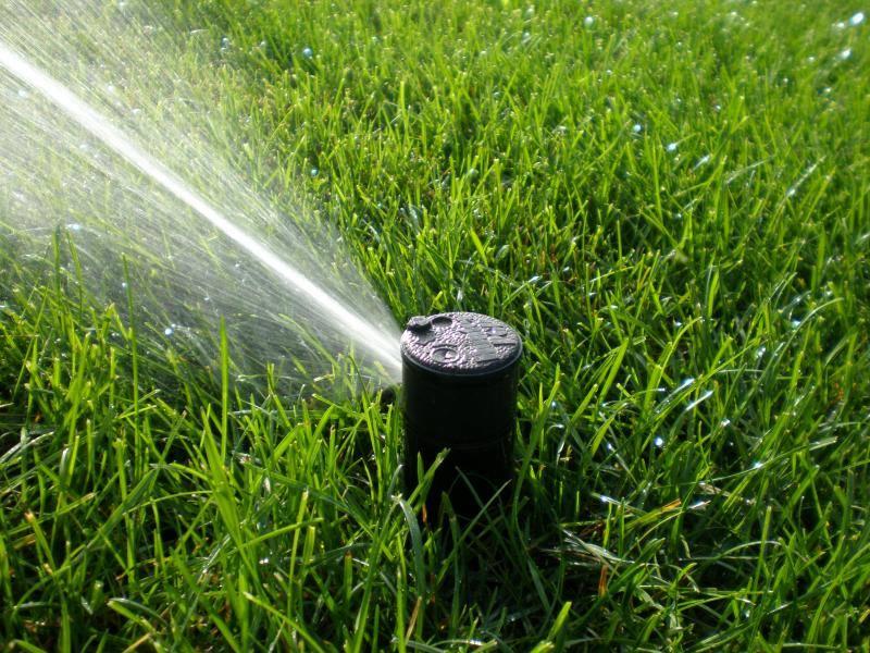 Moultonboro Nh Irrigation Specialist Offering Sprinker